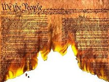 flaming_constitution